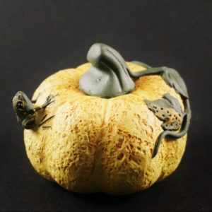 Pumpkin-with-frog-tea-pet